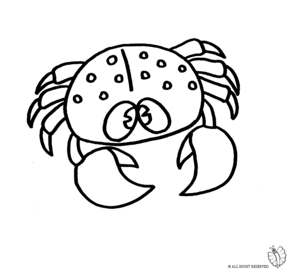 Stampa disegno di granchio da colorare for Pesci da disegnare per bambini