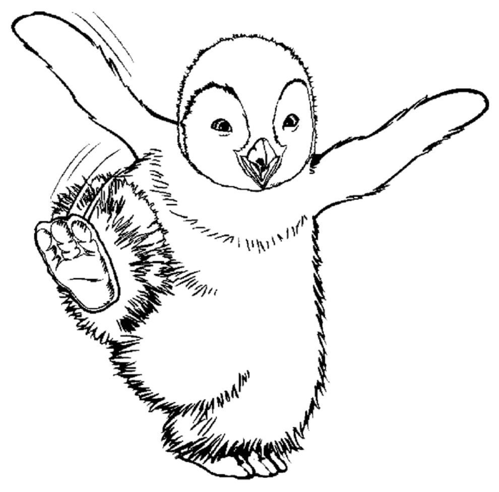 Stampa disegno di happy feet da colorare for Pinguino da colorare