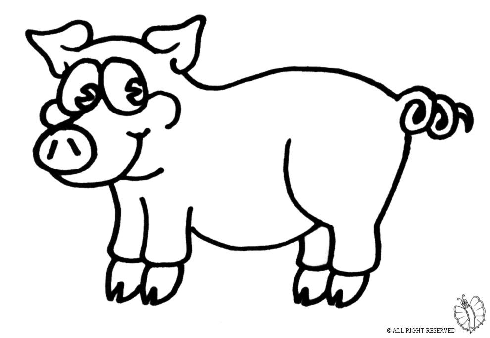 Stampa disegno di maialino da colorare for Maialino disegno per bambini