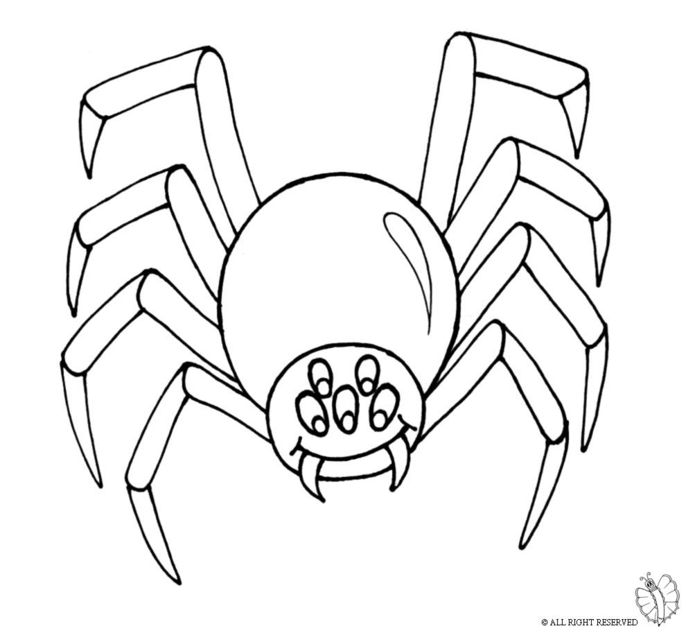 Disegni da colorare uomo ragno stampa e colora con i for Uomo ragno immagini da colorare
