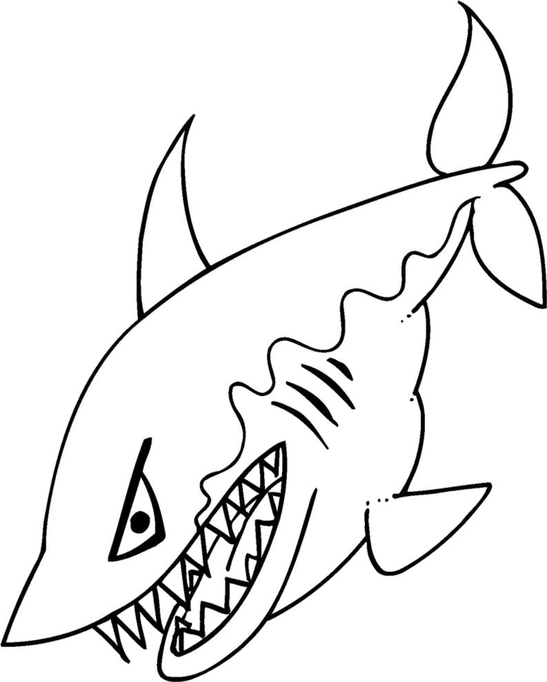 Disegno da colorare squalo bianco migliori pagine da for Squalo da colorare per bambini