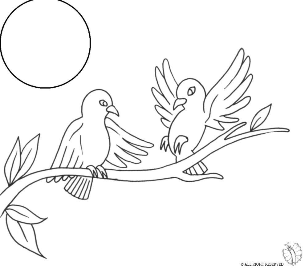 Stampa disegno di uccelli sull 39 albero da colorare for Uccellino disegno