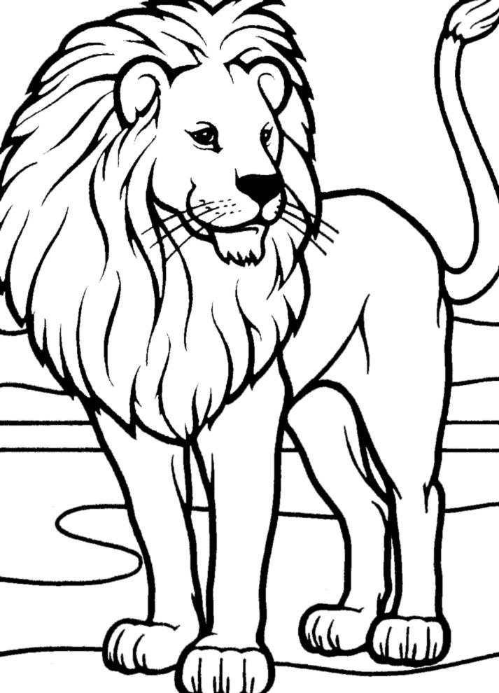 Stampa disegno di leone da colorare for Disegni di animali per bambini