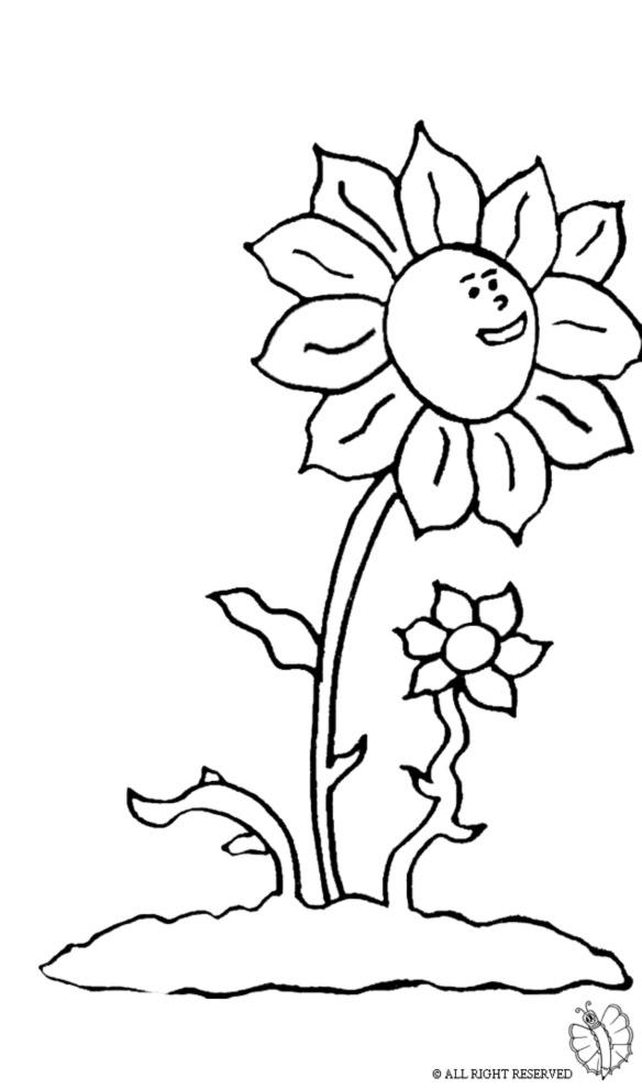 Pin stampa disegno vaso con fiori colorare ajilbabcom for Vaso di fiori disegno
