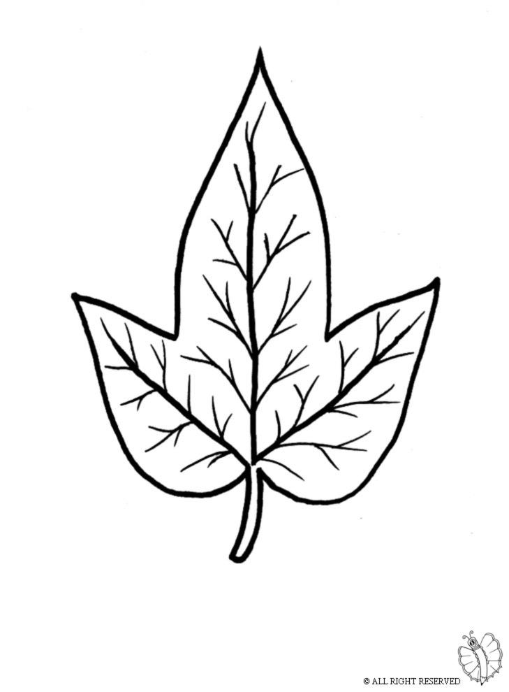 disegno di Foglia da colorare