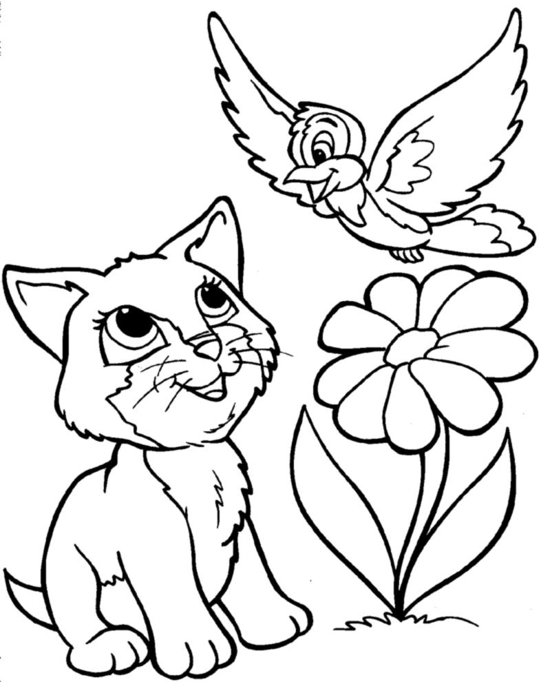 Stampa disegno di gattino e uccellino da colorare for Costruzione di disegni online