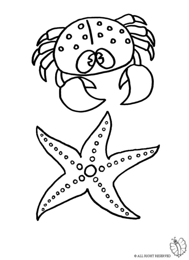 stampa disegno di animali marini da colorare