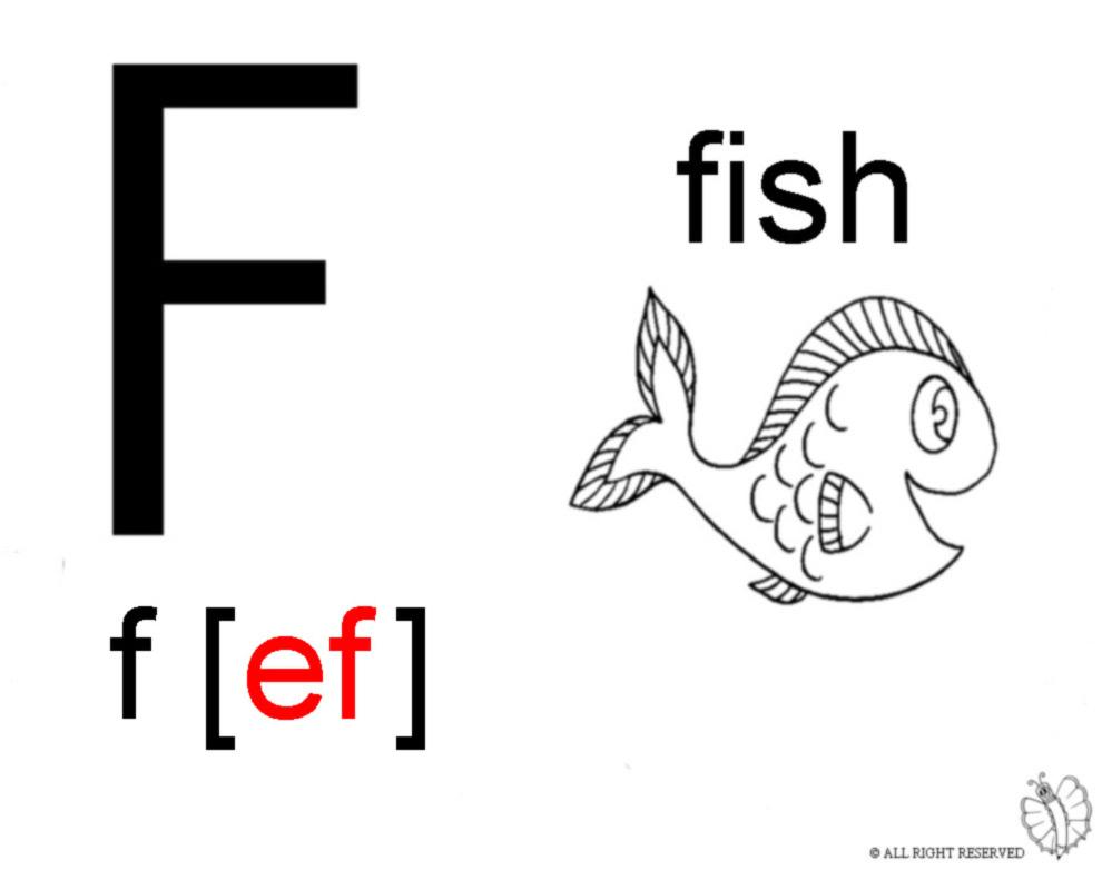 Stampa disegno di lettera f alfabeto inglese da colorare