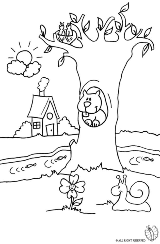 Stampa disegno di paesaggio naturale da colorare - Animali immagini da colorare pagine da colorare ...