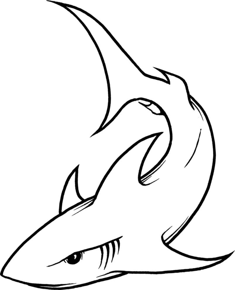Disegni tatuaggi tattoo da colorare e stampare for Disegno squalo