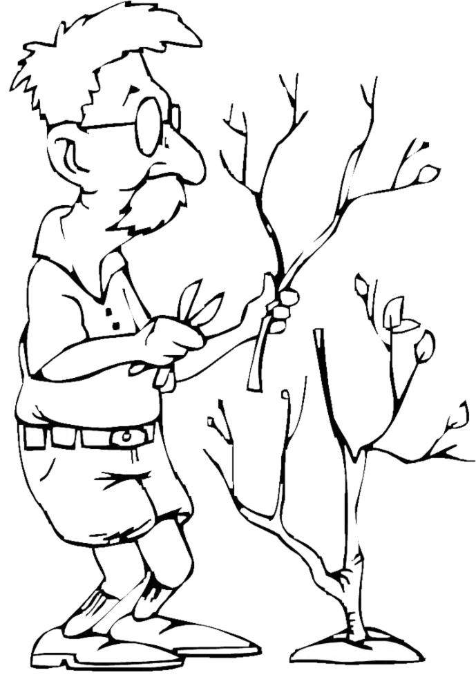 Stampa disegno di nonno giardiniere da colorare for Disegno giardino da colorare