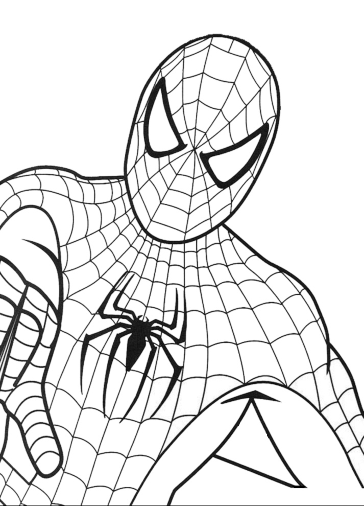 stampa disegno di spiderman da colorare