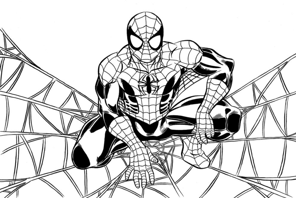 stampa disegno di spiderman sulla ragnatela da colorare